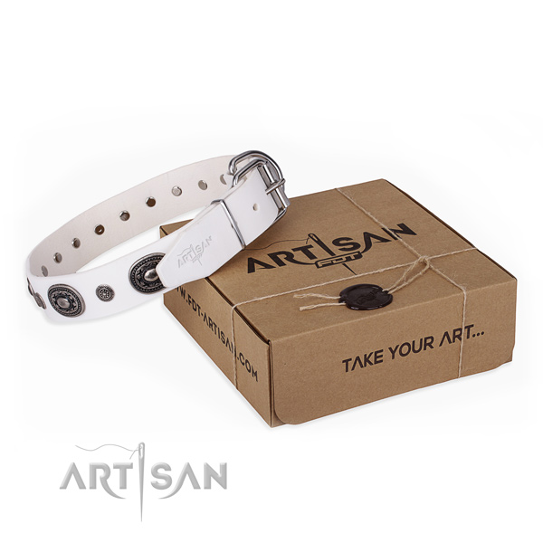 Top rate leather dog collar crafted for stylish walking