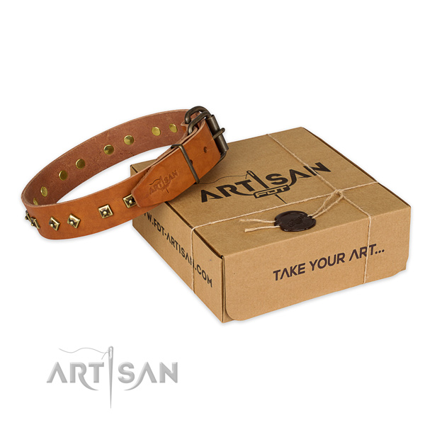Rust resistant fittings on full grain natural leather dog collar for daily use