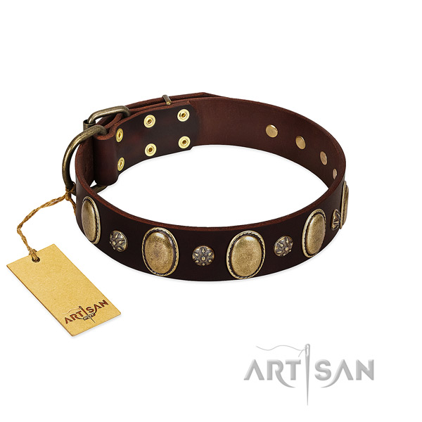 Stylish walking flexible leather dog collar with adornments