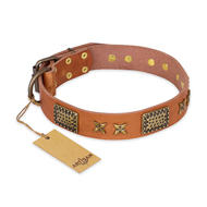 """Cosmic Traveller"" FDT Artisan Adorned Leather Bulldog Collar with Old Bronze-Plated Stars and Plates"
