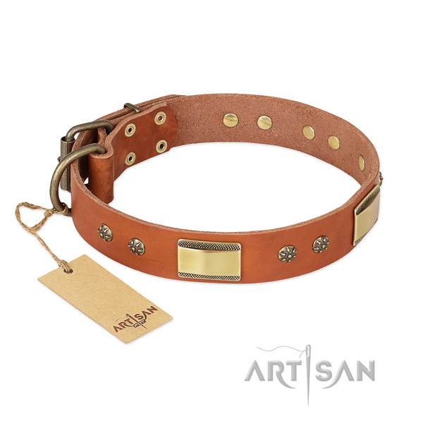 Perfect fit natural genuine leather collar for your four-legged friend