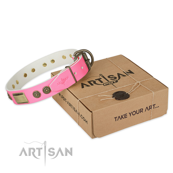 Corrosion proof decorations on dog collar for handy use