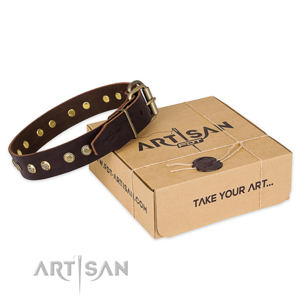 Strong traditional buckle on full grain leather collar for your impressive four-legged friend