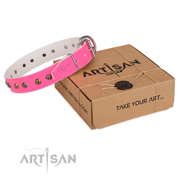 Daily walking dog collar with Stylish corrosion proof adornments