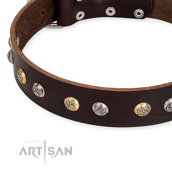 Genuine leather dog collar with awesome strong adornments