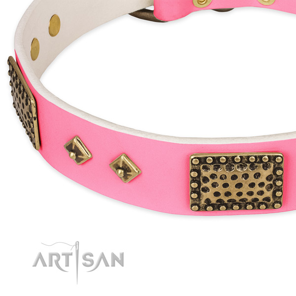 Full grain natural leather dog collar with embellishments for handy use