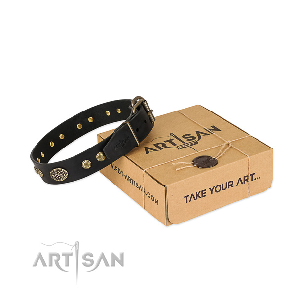Reliable adornments on full grain leather dog collar for your dog