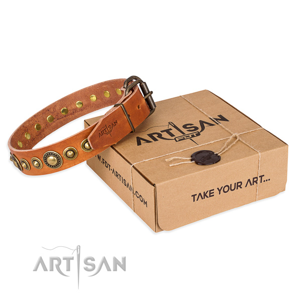 Top notch genuine leather dog collar created for everyday use