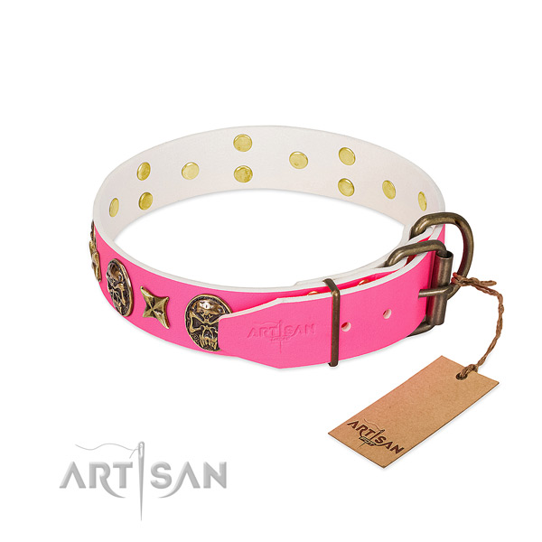 Rust resistant buckle on genuine leather collar for walking your four-legged friend