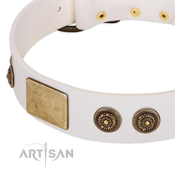 Designer dog collar created for your lovely pet