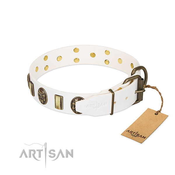 Corrosion proof fittings on genuine leather collar for stylish walking your dog