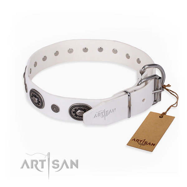 High quality full grain genuine leather dog collar made for stylish walking