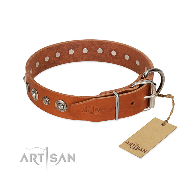 Quality natural leather dog collar with stylish design adornments