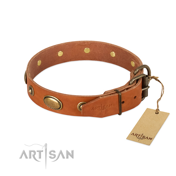 Rust resistant traditional buckle on full grain leather dog collar for your pet