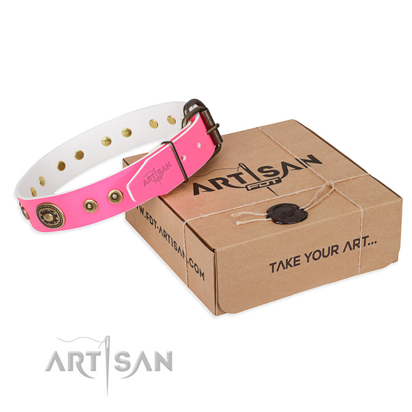Full grain genuine leather dog collar made of best quality material with corrosion proof fittings