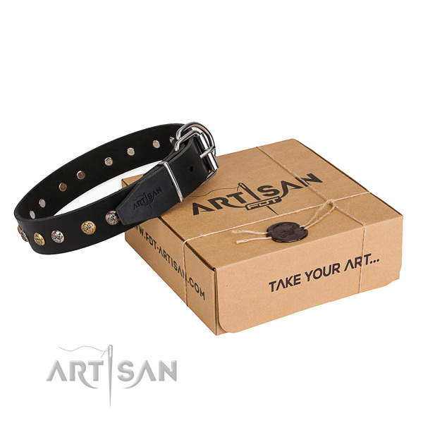 Soft leather dog collar crafted for basic training