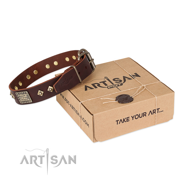 Trendy leather collar for your lovely pet