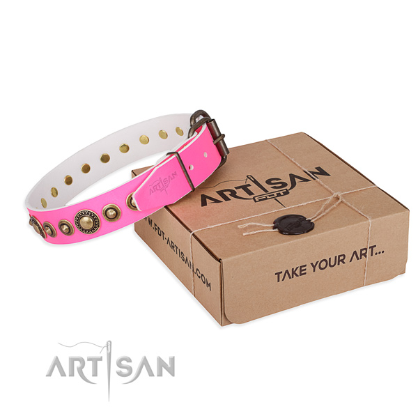 Top rate full grain leather dog collar created for fancy walking