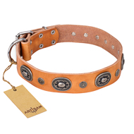 """Twinkle Twinkle"" FDT Artisan Incredible Studded Tan Leather Bulldog Collar"