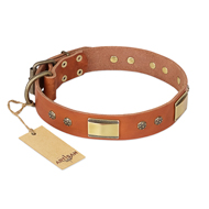"""Enchanting Spectacle"" FDT Artisan Tan Leather Bulldog Collar with Old Bronze Look Plates and Round Studs"