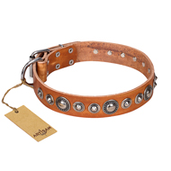 """Daily Chic"" FDT Artisan Tan Leather Bulldog Collar with Decorations"