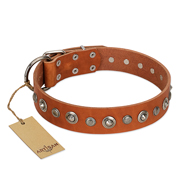 """Gorgeous Roundie"" FDT Artisan Tan Leather Bulldog Collar with Chrome-plated Circles"