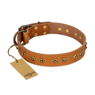 """Autumn Story"" FDT Artisan Leather Bulldog Collar with Old Bronze Look Studs"