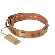 """Lost Desert"" FDT Artisan Leather Bulldog Collar with Brass Decorations"