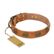 """Magic Amulet"" FDT Artisan Tan Leather Bulldog Collar with Oval Studs"
