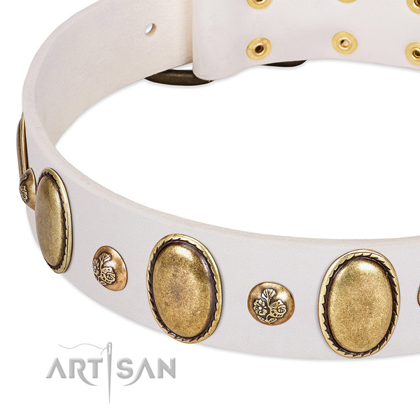 Natural leather dog collar with remarkable embellishments