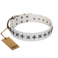 """Midnight Stars"" FDT Artisan Fashionable Leather Bulldog Collar with Old Silver-like Plated Decorations"