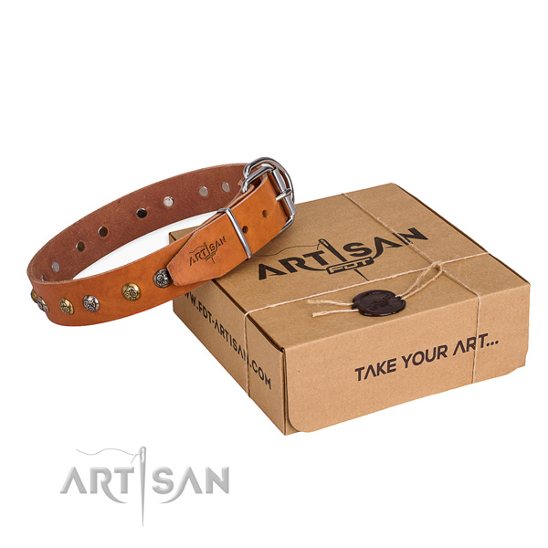 Daily use dog collar with Unique rust resistant decorations