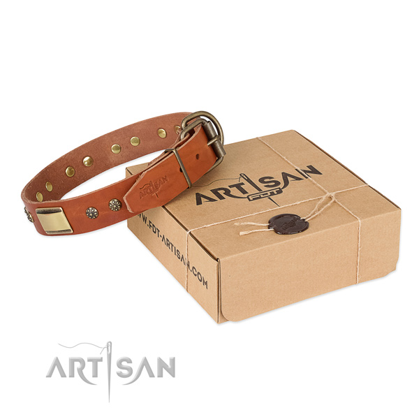 Best quality leather collar for your stylish pet