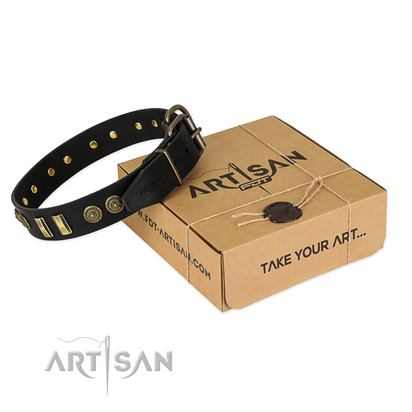 Corrosion proof studs on leather dog collar for your canine