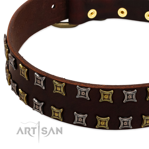 Top rate natural leather dog collar for your beautiful four-legged friend