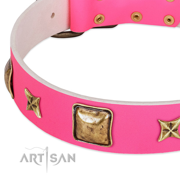 Natural leather dog collar with top notch embellishments