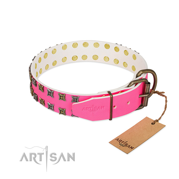 Full grain natural leather collar with significant embellishments for your canine