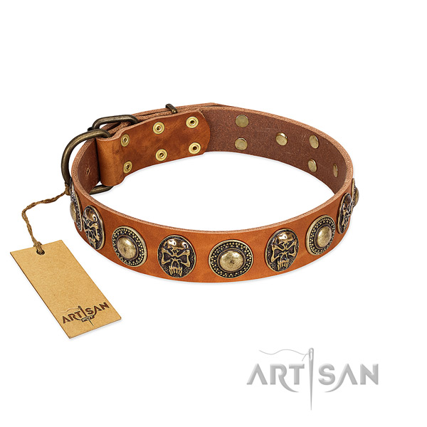 Easy to adjust full grain leather dog collar for basic training your canine