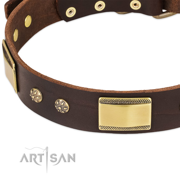 Reliable D-ring on leather dog collar for your canine