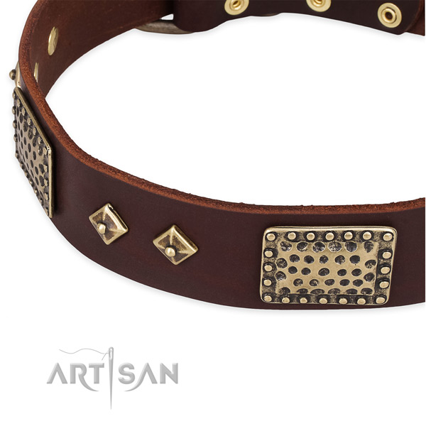 Strong traditional buckle on full grain genuine leather dog collar for your canine