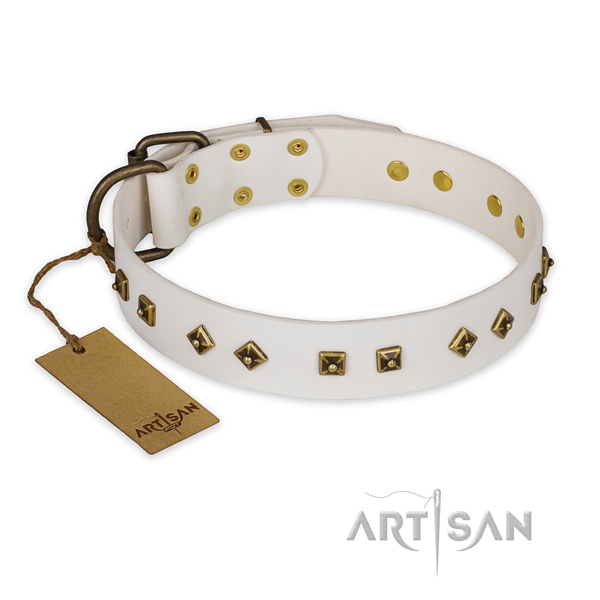 Fine quality leather dog collar with durable D-ring