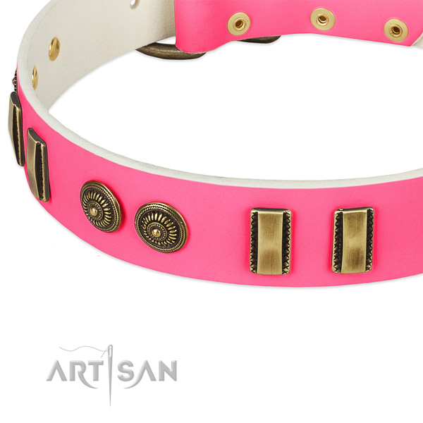 Corrosion resistant studs on natural leather dog collar for your dog