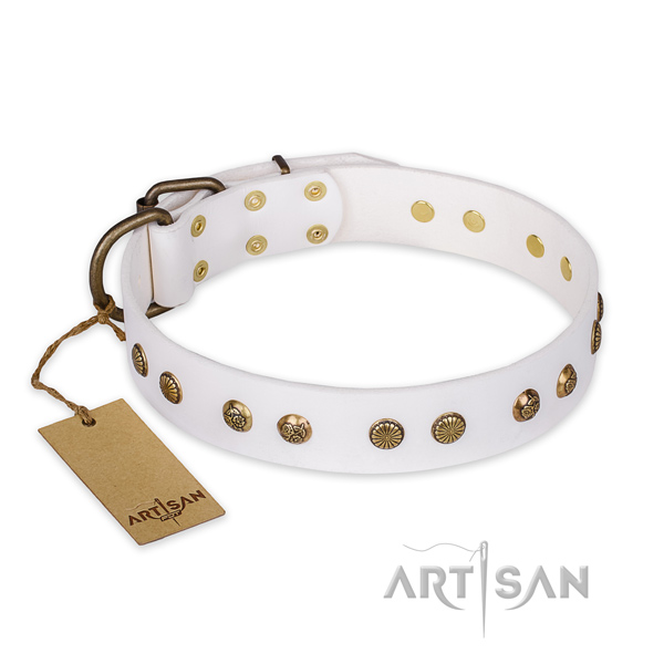 Significant full grain leather dog collar with durable fittings