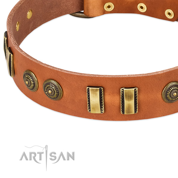 Rust resistant embellishments on leather dog collar for your pet