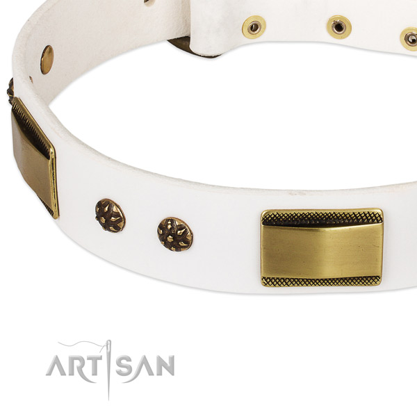 Reliable studs on leather dog collar for your pet