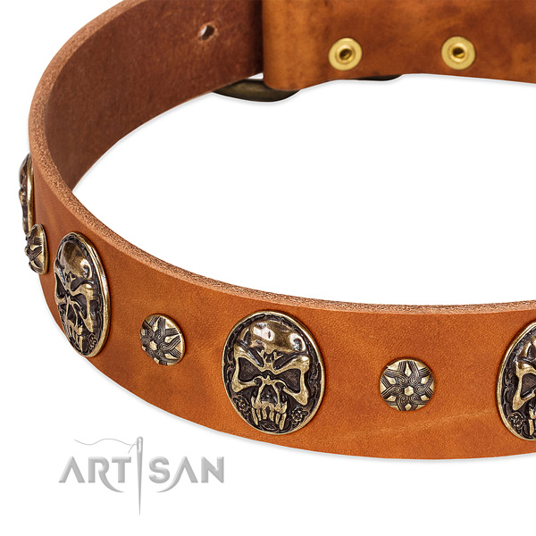 Rust resistant hardware on full grain natural leather dog collar for your dog