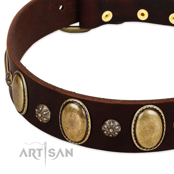 Daily use top notch full grain leather dog collar