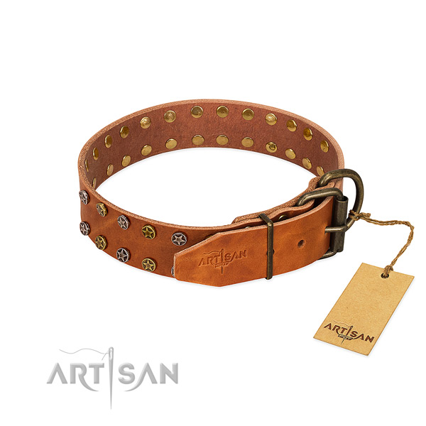 Stylish walking full grain leather dog collar with significant embellishments