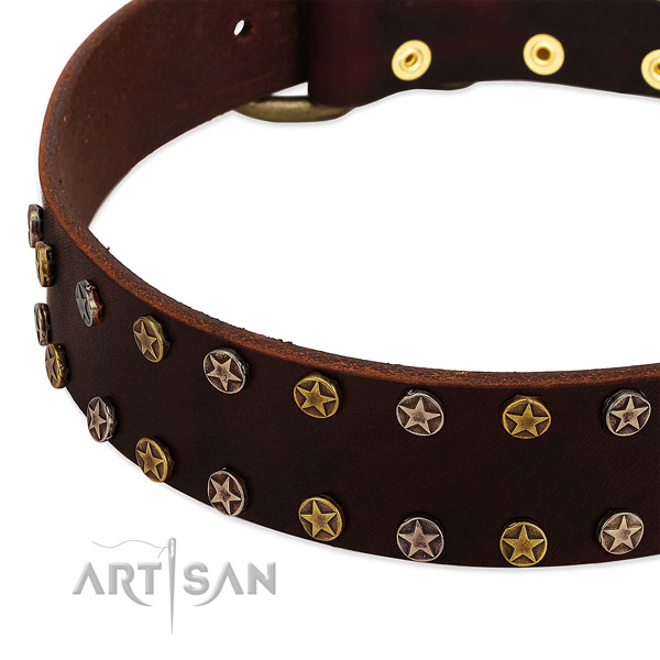 Daily use full grain natural leather dog collar with top notch embellishments