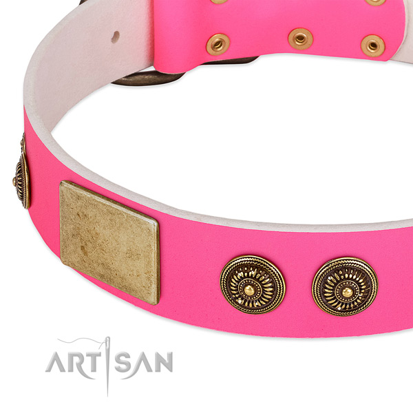 Embellished dog collar created for your impressive canine